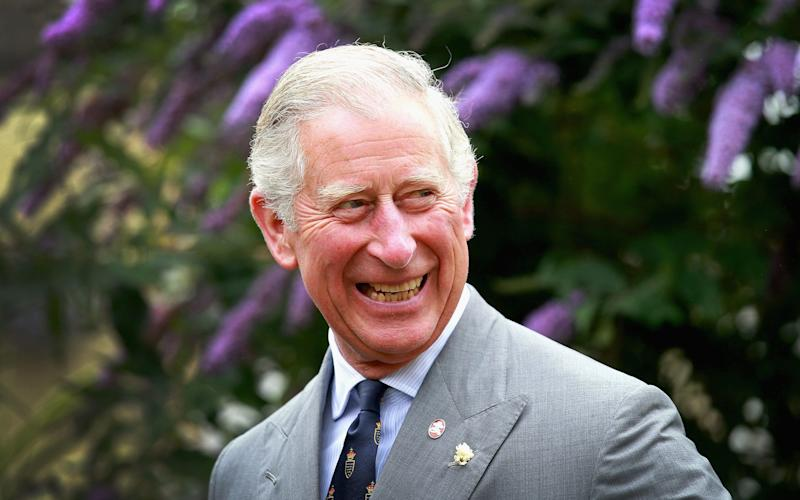 The Prince of Wales set up a meeting with chocolate companies to end deforestation - Credit: Chris Jackson