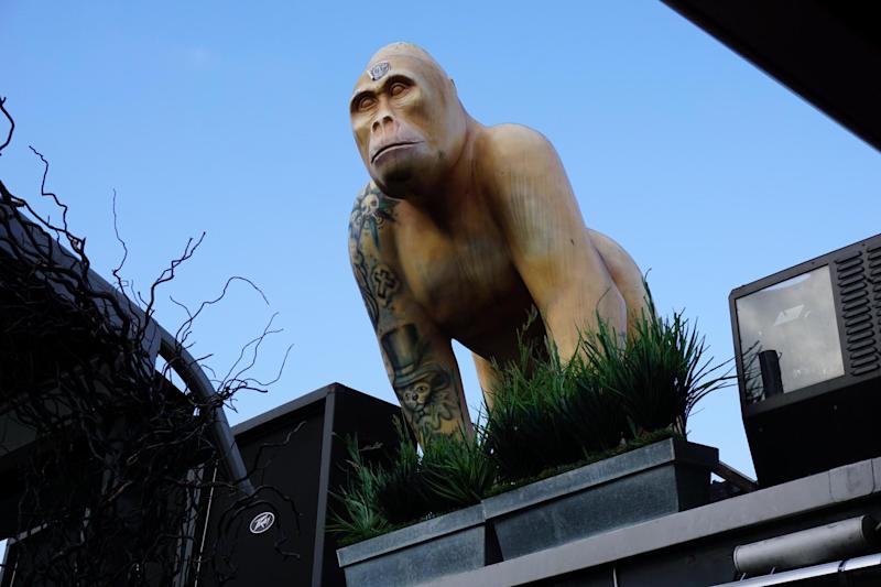 """Lookout: """"Ace"""" the gorilla by the hot tub on the roof of Karma Sanctum Hotel"""