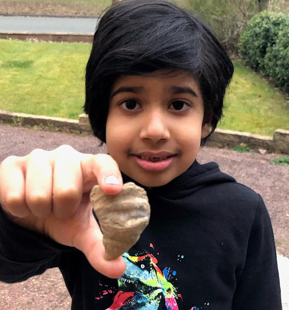 Six-year-old boy finds fossil in his garden