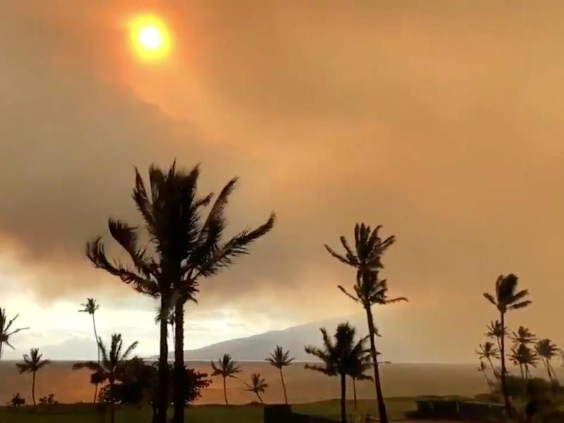 Wildfire in Hawaii
