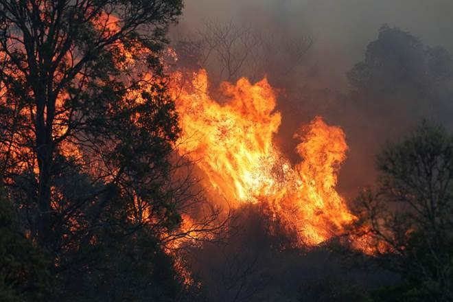 fires in Australia today, Australian Red Cross website, Bushfire emergency grant, worst bushfires in Australia, bushfire statistics australia, australia bushfire death toll 2019, bushfires in australia 2018, black saturday bush fires, climate change, climate change adaptation, red cross australia contact, australian red cross login, australian red cross programs, australian red cross volunteer