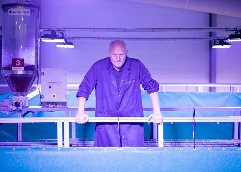 """Fredrikstad Seafoods general manager Roger Fredriksen says: """"""""At sea, you depend on the almighty for many things. In a land-based farm, we are suddenly the all-powerful one""""."""