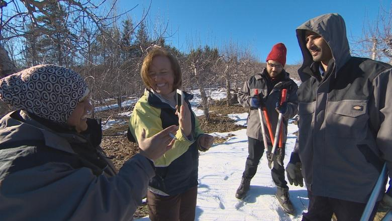 Syrian farming families get back to the land in Nova Scotia