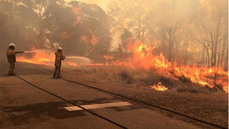 The fire front was continuing to head south-west on Friday, as towns including Harvey were evacuated. Photo: 7 News