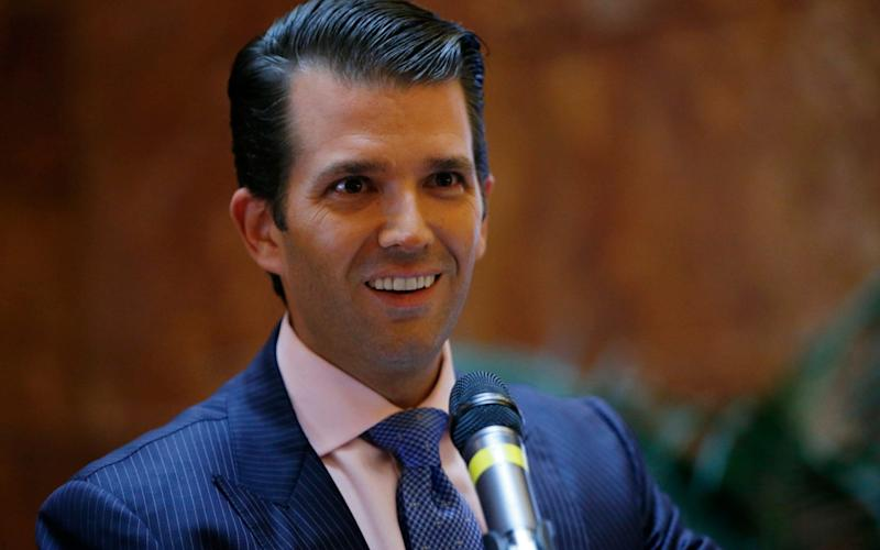 Donald Trump Jr agreed to a meeting after Rob Goldstone's approach - AP Photo/Kathy Willens