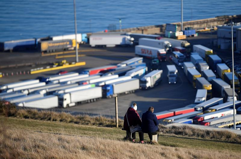 A couple of walkers view lorries queueing to pass through border and security checks as they arrive by ferry from France at the Port of Dover, Britain, February 14, 2019. REUTERS/Toby Melville