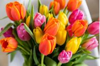 """<p>Even if the tulips in your garden haven't bloomed yet, you can play pretend with this tricolor bunch.</p><p><a class=""""link rapid-noclick-resp"""" href=""""https://go.redirectingat.com?id=74968X1596630&url=https%3A%2F%2Fwww.1800flowers.com%2Fvirtual-backgrounds&sref=https%3A%2F%2Fwww.goodhousekeeping.com%2Fholidays%2Feaster-ideas%2Fg35822780%2Feaster-zoom-backgrounds%2F"""" rel=""""nofollow noopener"""" target=""""_blank"""" data-ylk=""""slk:DOWNLOAD HERE"""">DOWNLOAD HERE</a></p>"""