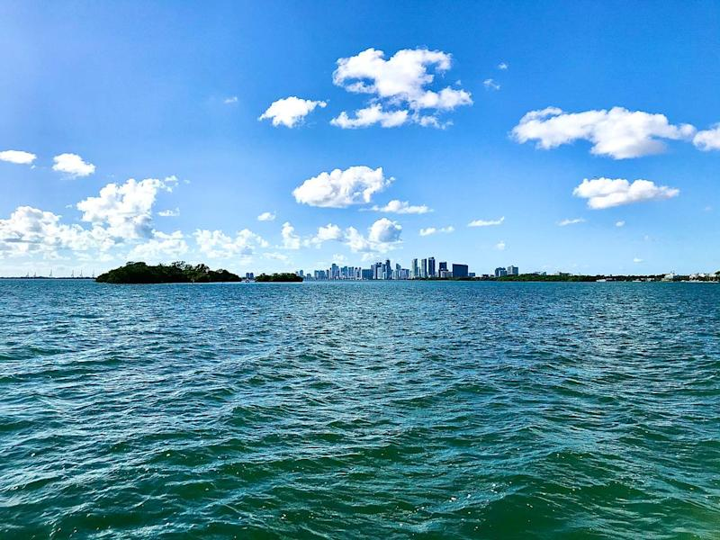 Bird Key is one of only two natural islands in Biscayne Bay north of Virginia Key. It was named centuries ago by a British surveyor sent by King George III and is now owned by Finlay Matheson, a member of a one of the oldest and wealthiest families in Miami.