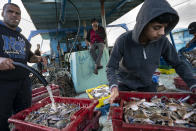 Fishermen unload their hold before sorting and delivering their haul to market after a limited number of boats were allowed to return to the sea following a cease-fire reached after an 11-day war between Hamas and Israel, in Gaza City, Sunday, May 23, 2021. (AP Photo/John Minchillo)