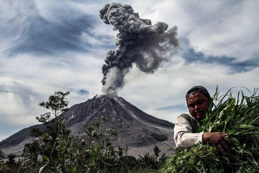 <p>A man carries his harvest from his vegetable field, as Mount Sinabung spews thick smoke, in Karo, North Sumatra. Mount Sinabung roared back to life in 2010 for the first time in 400 years, after another period of inactivity it erupted once more in 2013, and has remained highly active since. (Ivan Damanik/AFP/Getty Images) </p>