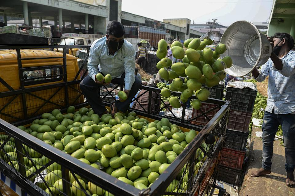 A labourer (R) loads raw mangoes in a truck at the Gaddiannaram fruit market during a government-imposed nationwide lockdown as a preventive measure against the COVID-19 coronavirus, on the outskirts of Hyderabad on April 16, 2020. (Photo by Noah SEELAM / AFP) (Photo by NOAH SEELAM/AFP via Getty Images)