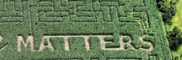 """Corn maze with """"Your Life Matters"""" landscaped in."""