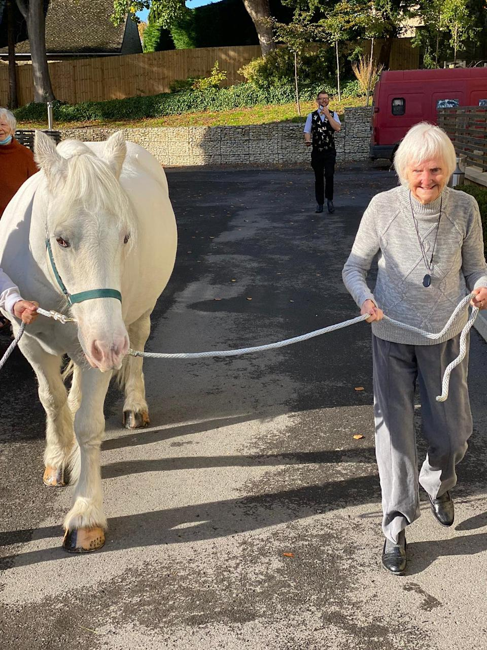 "Susan, 77, had the dream to ""see a horse and stroke her nose"" (swns)"