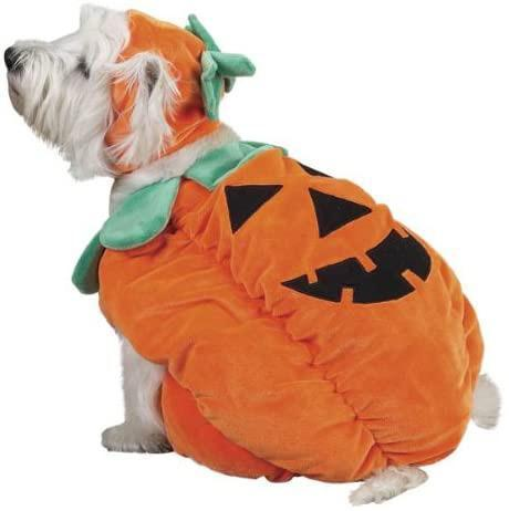 "<p>Prove your pup is the pick of the patch. </p> <p><strong>Buy it!</strong> Pumpkin Pooch Costume, $34.99; <a href=""https://www.amazon.com/Zack-Zoey-Pumpkin-Costume-Orange/dp/B001BL6N5S/ref=as_li_ss_tl?ie=UTF8&linkCode=ll1&tag=polifemostpopulardogcostumeskbenderoct20-20&linkId=3e2c574d362b380b7972dc7bb989faf6"" rel=""nofollow noopener"" target=""_blank"" data-ylk=""slk:Amazon.com"" class=""link rapid-noclick-resp"">Amazon.com</a></p>"