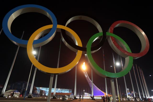 Olympic flame is seen after the opening ceremony of the 2014 Sochi Winter Olympics
