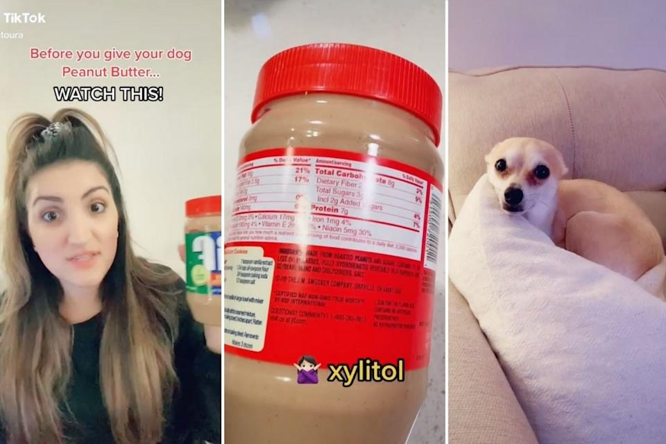 Screenshot of TikTok video warning dog owners about xylitol in peanut butter. Source: TikTok/@catoura