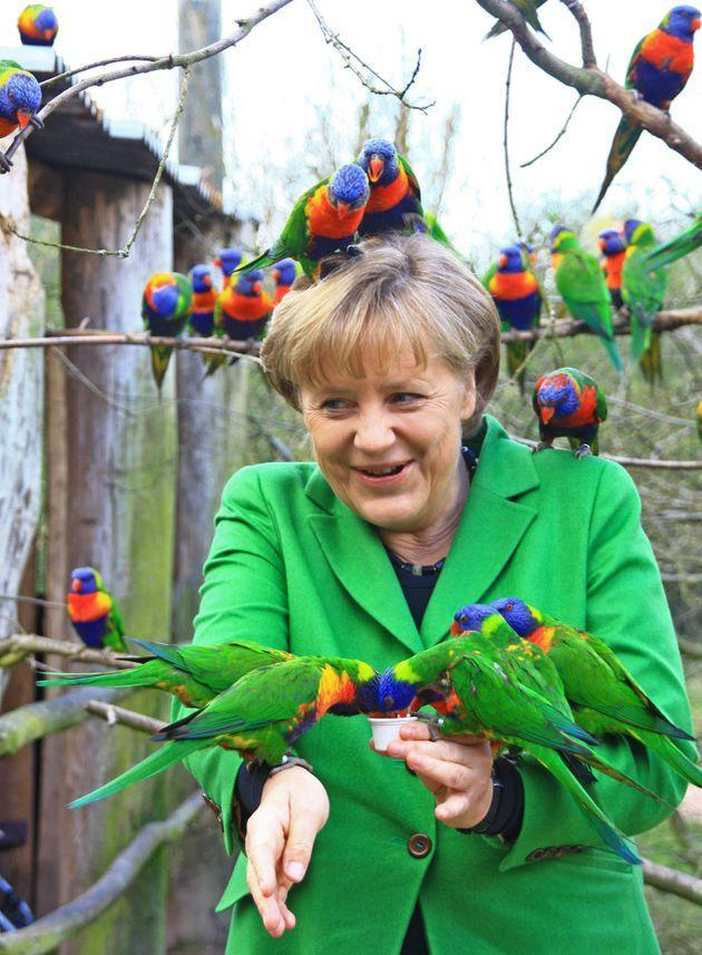 Angela Merkel in a bird park in Marlow, northern Germany on April 17, 2012 (Photo: AFP via DPA/AFP via Getty Images)