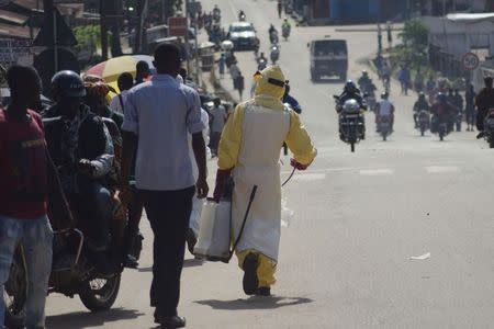 A health worker with disinfectant spray walks down a street outside the government hospital in Kenema, July 10, 2014. REUTERS/Tommy Trenchard
