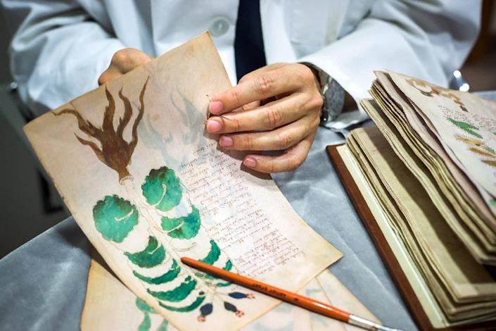 The illustrated codex hand-written manuscript Voynich is named after antiquarian Wilfrid Voynich who bought it around 1912 from a collection of books belonging to the Jesuits in Italy (AFP Photo/Cesar Manso)