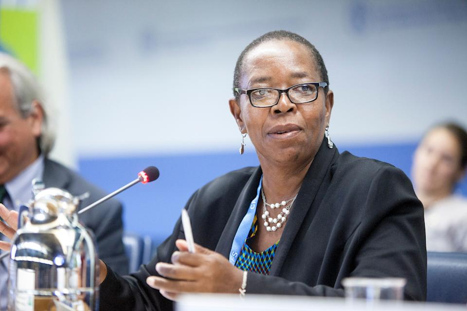 Elizabeth Mpofu speaks during a 2017 World Food Security session in Rome. Credit: ©FAO/Giulio Napolitano (Photo: )