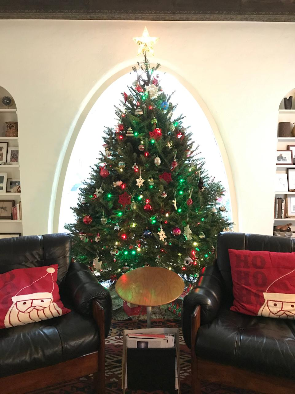 Unable to see family and stuck at home this holiday season, Elizabeth Vitanza set up three Christmas trees at her house, including a mail-order tree.