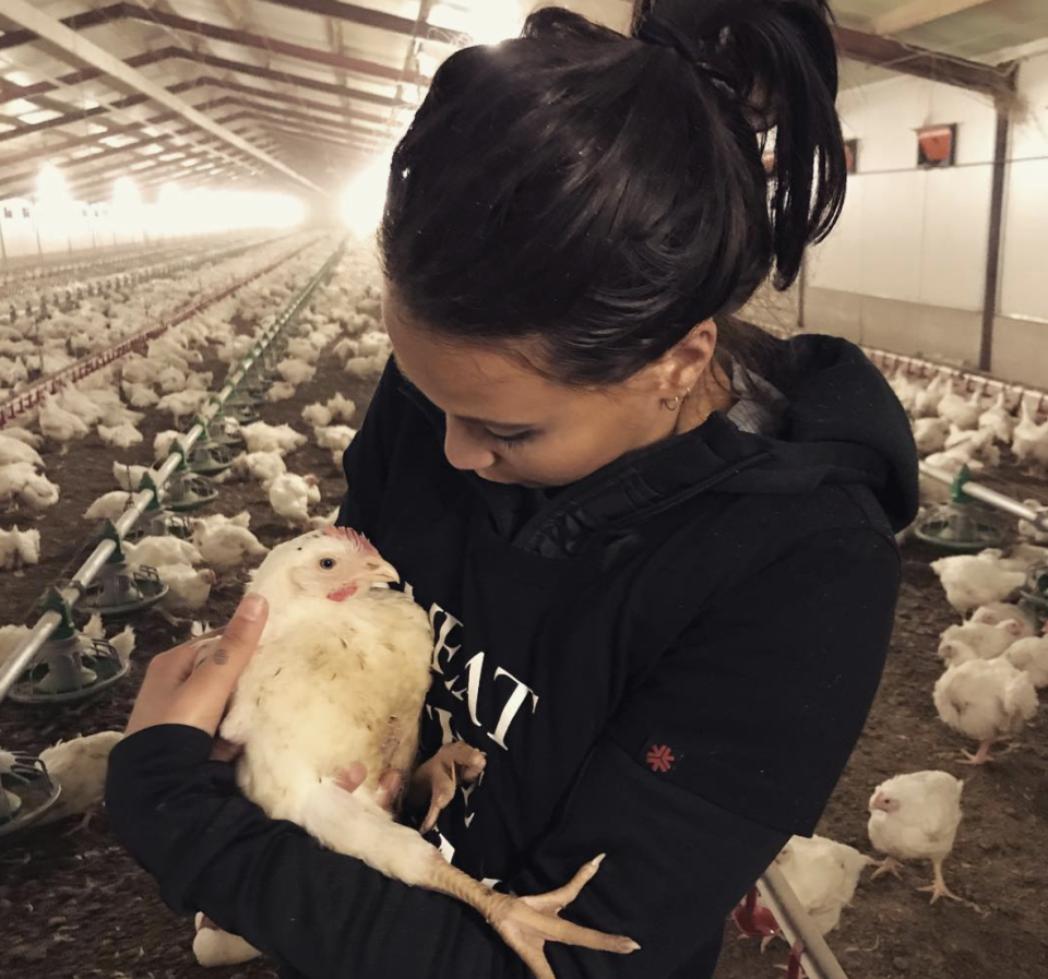 Ms Doellinger believes there is no humane way to farm animals for meat. Source: Instagram