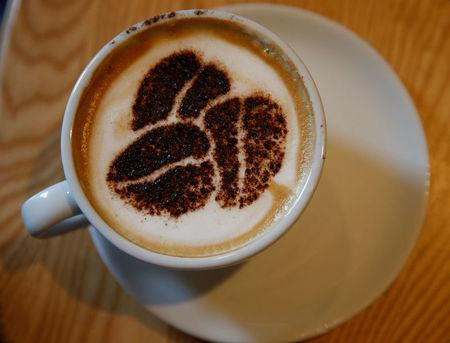 FILE PHOTO: A Cappuccino stands on a table at a branch of Costa coffee in Manchester, Britain, March 18, 2016. REUTERS/Phil Noble/File Photo