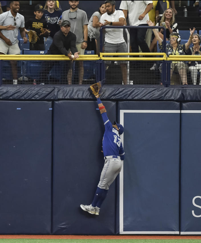 A fan interferes with a fly ball hit by Tampa Bay Rays' Yandy Diaz as Toronto Blue Jays left fielder Lourdes Gurriel Jr., leaps for the ball during the seventh inning of a baseball game Sunday, July 11, 2021, in St. Petersburg, Fla. (AP Photo/Steve Nesius)