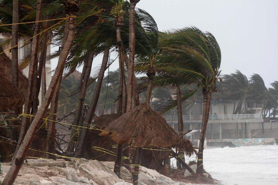 Palm trees are buffeted by the winds of Hurricane Zeta in Playa del Carmen, Mexico, early Tuesday, Oct. 27, 2020. Zeta is leaving Mexico's Yucatan Peninsula on a path that could hit New Orleans Wednesday night.