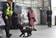 Britain's Queen Elizabeth II and Prince William, right, watch a demonstration of a Forensic Explosives Investigation with explosives detection dog named 'Max' during a visit to the Defence Science and Technology Laboratory (DSTL) at Porton Down, England, Thursday Oct. 15, 2020, to view the Energetics Enclosure and display of weaponry and tactics used in counter intelligence. (Ben Stansall/Pool via AP)