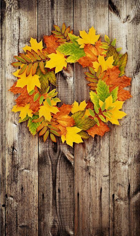 <p>Attach flattened, dried leaves to a flat wreath form. Gather as many different kinds and colors as you can in your own yard or your local park.</p>