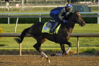 Kentucky Derby hopeful Rock Your World works out at Churchill Downs Tuesday, April 27, 2021, in Louisville, Ky. The 147th running of the Kentucky Derby is scheduled for Saturday, May 1. (AP Photo/Charlie Riedel)