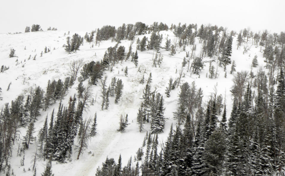 This aerial photo provided by Gallatin National Forest Avalanche Center shows the top half of an avalanche in the Gallatin National Forest, Mont. on Sunday, Feb. 14, 2021. The deaths of two Colorado men caught in backcountry avalanches and a third in Montana over the frigid Presidents Day weekend underscore the danger of perilous backcountry conditions in the Rocky Mountains. (Gallatin National Forest Avalanche Center via AP)
