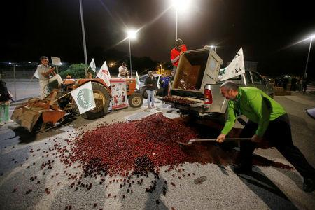 French farmers, members of the FNSEA, the country's largest farmers' union, spread cherries on the road as they block the Total biodiesel refinery at La Mede near Fos-sur-Mer, France June 11, 2018. REUTERS/Jean-Paul Pelissier