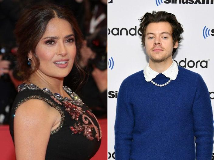 Salma Hayek says her pet owl vomited a 'ball of rat hair' on Harry Styles (Getty Images)