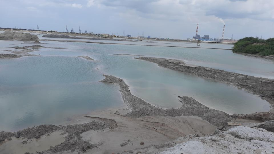 """<div class=""""paragraphs""""><p>These were once agricultural lands in Seppakkam that have now turned into an ash pond filled with poisonous chemicals.</p></div>"""