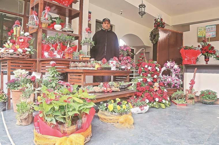 what to gift, gift suggestions, plant as gift, Arpana Deshpande, indian express news, indian express talk