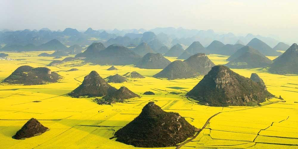 German photographer Anne Berlin captured this remarkable 'Alice in Wonderland' style rapeseed field in Luoping, China (Caters)
