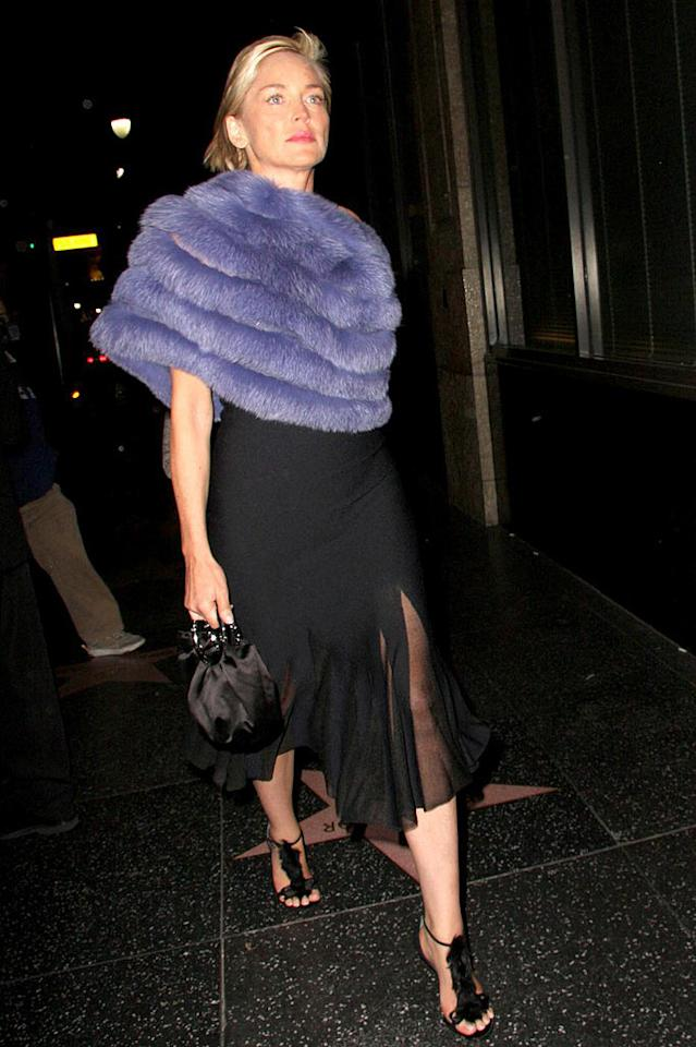 "Sharon Stone's dress is sharp and her shoes are sexy, but her Muppet-inspired cape has got to go. Greg Tidwell/<a href=""http://www.pacificcoastnews.com/"" target=""new"">PacificCoastNews.com</a> - January 13, 2009"