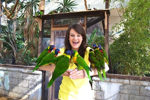 Attractions Ontario is offering discounts to some of its popular tourist destinations, like Bird Kingdom in Niagara Falls, Ont. (Attractions Ontario/Facebook)