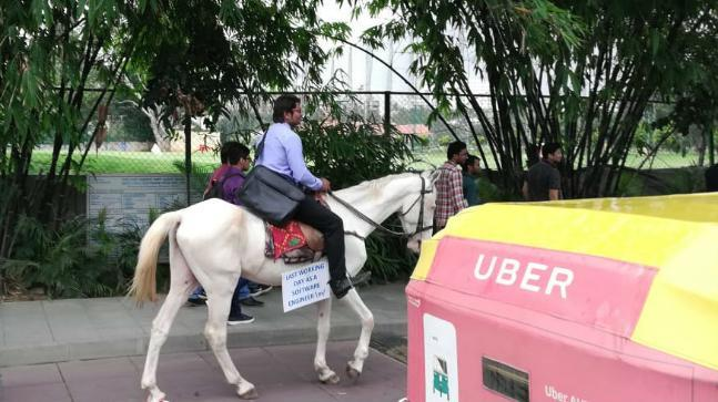"On his horse, Roopesh Kumar Verma carried a placard that said, ""Last working day as a software engineer""."