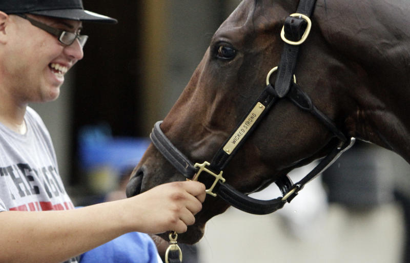 Hot walker Francisco Ugarte holds Kentucky Derby hopeful Wicked Strong after a morning workout at Churchill Downs Monday, April 28, 2014, in Louisville, Ky. (AP Photo/Garry Jones)