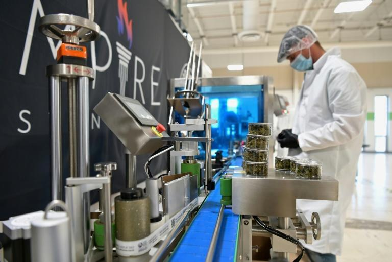 An Empire Standard employee assembles bottles containing CBD oil at their factory in Binghamton, New York on April 13, 2021