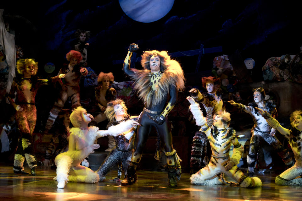 Rum Tum Tugger in the London/West End Cats musical 2019 tour production by Cameron Mackintosh and Andrew Lloyd Webber's The Really Useful Theatre Group. (PHOTO: CATS Tour 2019/Alessandro Pinna)