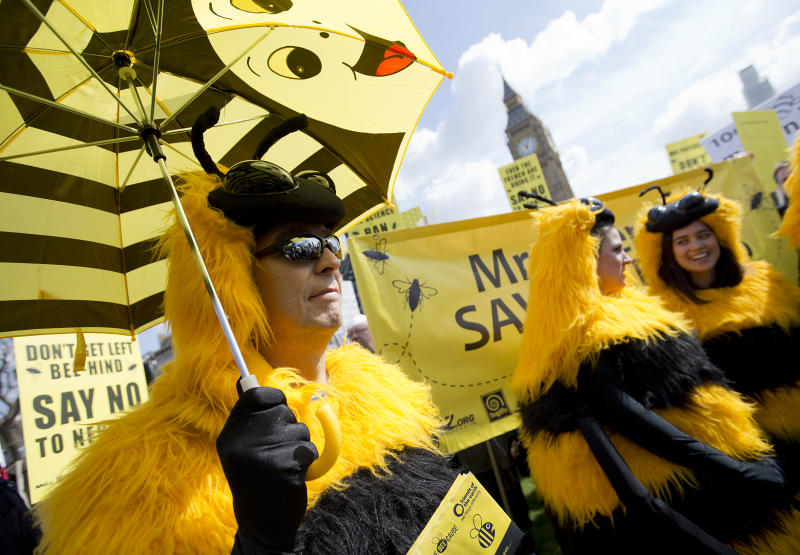 Beekeepers create buzz with UK Parliament protest