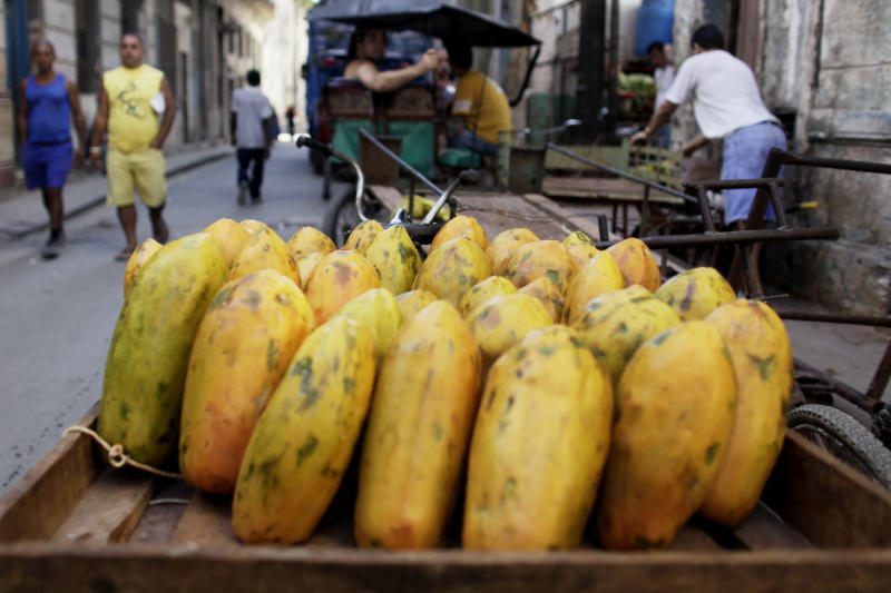 FILE - In this Wednesday, April 22, 2009 file photo, papayas sit on a cart at a public market in Old Havana, Cuba. On Friday, June 14, 2019, The Associated Press reported that stories circulating on the internet claiming that papaya, ginger and various other fruits and herbs work as natural birth control options, are untrue. (AP Photo/Javier Galeano)