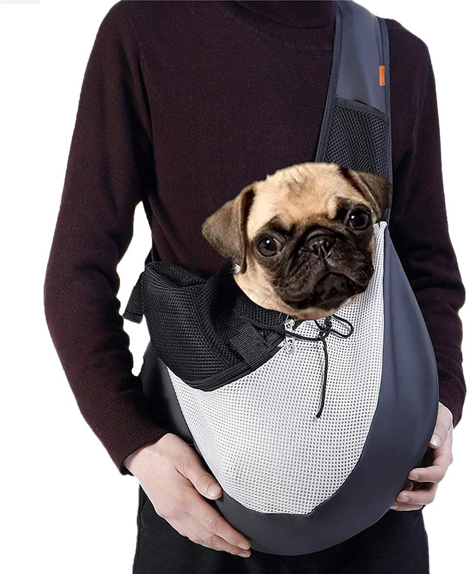 KUSSONLI pet carrier, how to fly with a dog