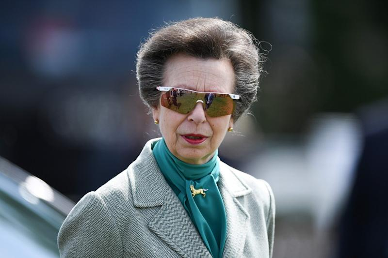 Princess Anne now (Getty Images)