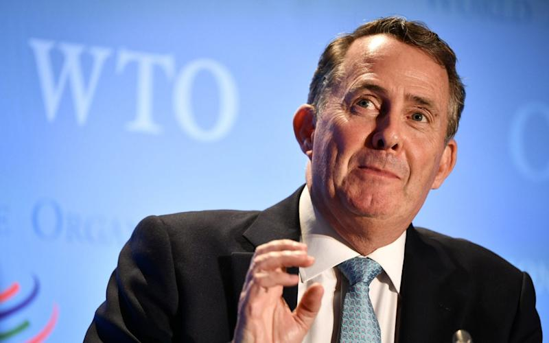 Liam Fox is one of five remaining candidates for the job of WTO director general - FABRICE COFFRINI/AFP