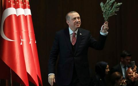 Turkey's President Recep Tayyip Erdogan, holding an olive branch arrives to deliver a speech at an event in Ankara, Turkey, - Credit: AP